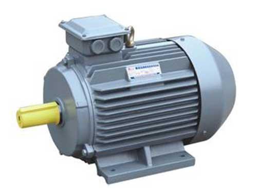 YE2、YE3高效节能三相异步电动机